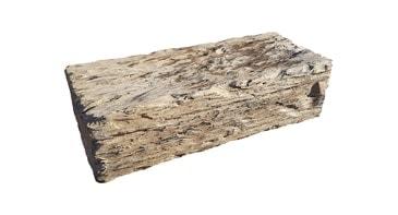 Häusler Versteinertes Holz Palisaden