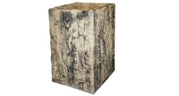 Häusler Pflanzentrog -Versteinertes Holz