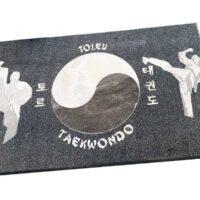 Häusler BeCreative Taekwondo